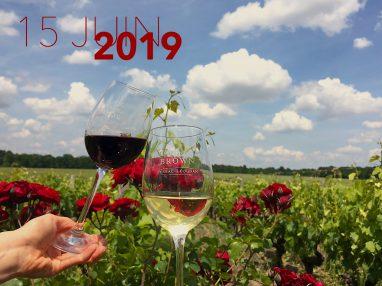 Brown Estivales 2019 Verres et vignoble
